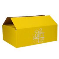 Geschenkdozen A Gift For You Geel (Neutraal)