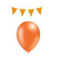 Feestartikelen Vlaggenlijn & Ballons